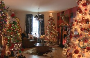 Dozens of trees fill woman's home for Christmas