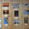 Photo contest focuses on conservation, appreciating the outdoors